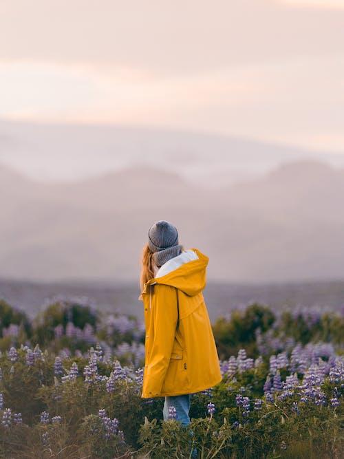 Pessoa Com Capuz Amarelo Em Pé No Campo De Flores Roxas