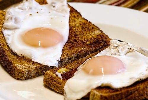 Fotobanka sbezplatnými fotkami na tému cholesterol, hrianka, jedlo, smažené vajíčka