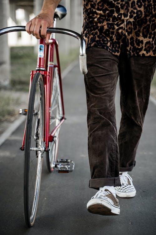 Бесплатное стоковое фото с велосипед, велосипедная дорожка, вертикальный выстрел