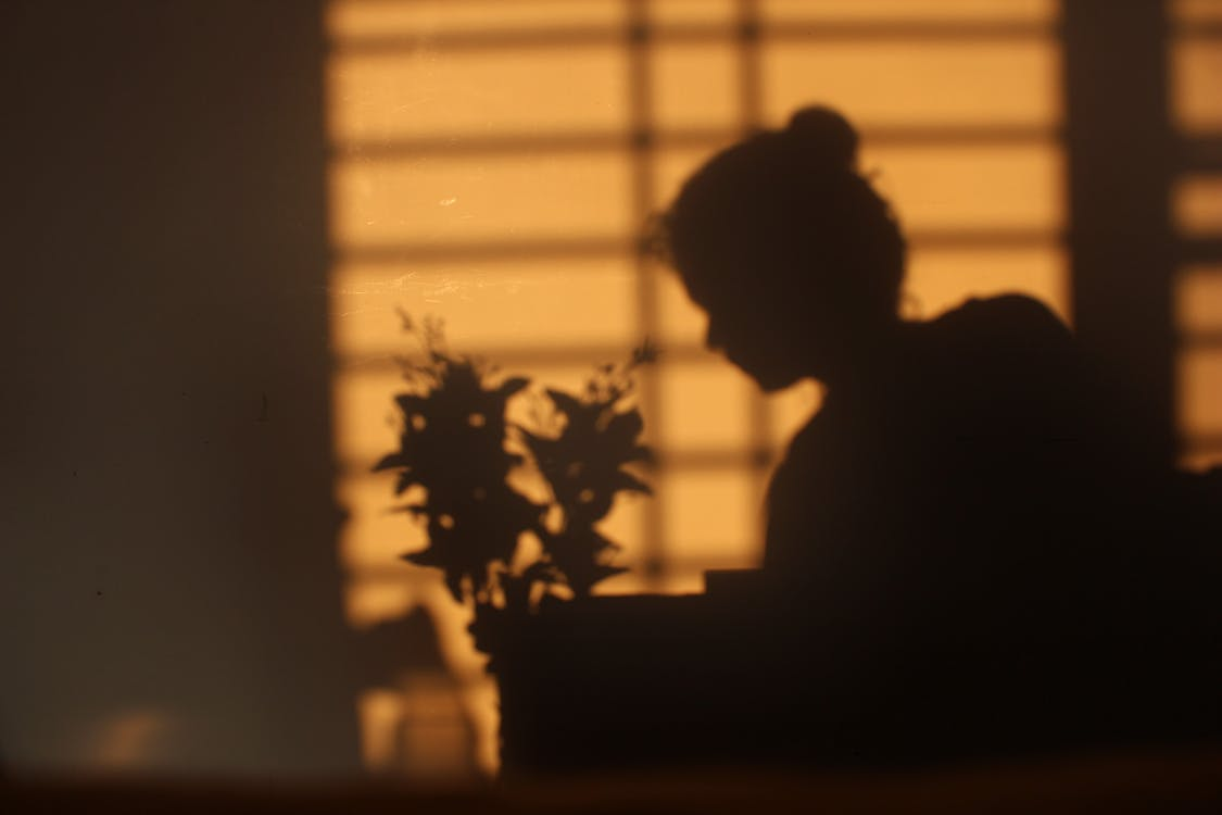 Silhouette of Person Sitting Beside Window With White Window Blinds