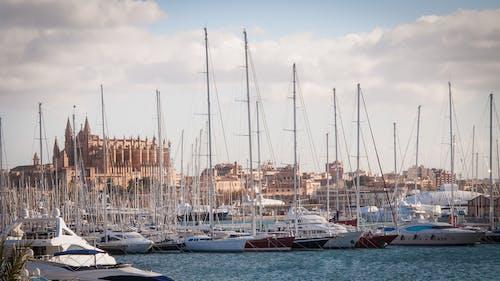 Kostnadsfri bild av båtar, hamn, hav, havsstrand