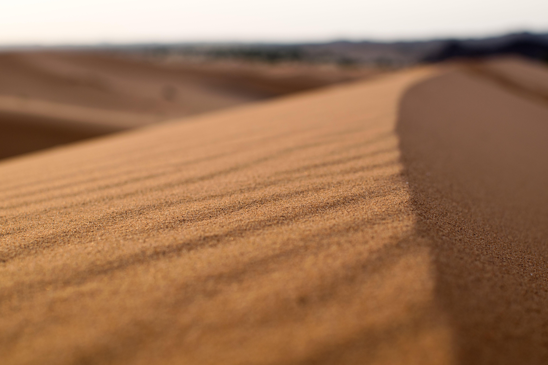 Kostenloses Stock Foto zu düne, fokus, landschaft, sand