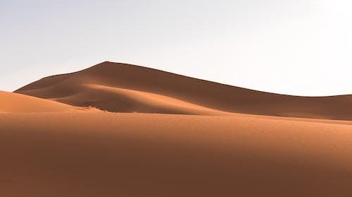 Foto d'estoc gratuïta de desert, duna, dunes de sorra, paisatge