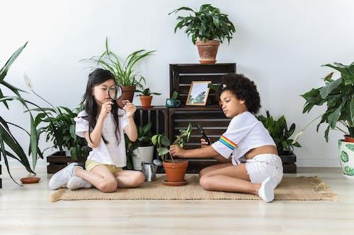 一起, 亞洲女孩, 內部, 公寓 的 免費圖庫相片