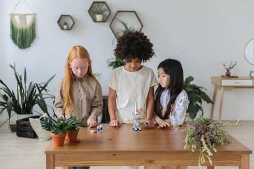 Concentrated multiethnic little girls standing near wooden table with microscope in cozy room