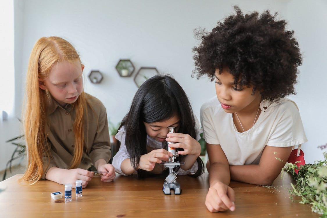 Concentrated multiethnic children in casual clothes watching in microscope  while studying together