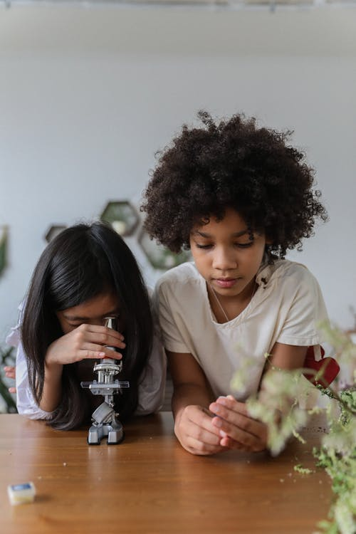 Multiethnic little girls looking into microscope