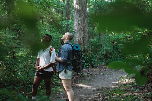 Multiethnic friends with backpacks exploring nature