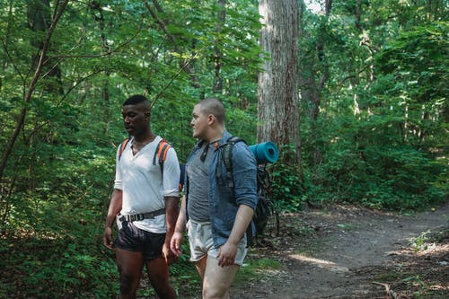 Multiethnic friends in casual clothes with backpacks hiking in green forest in daytime