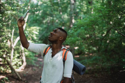 African American male with backpack standing in forest and holding mobile phone while catching GPS signal during hike