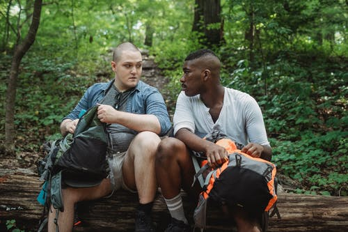 Multiracial men in comfortable outfits resting on tree trunk while looking at each other during trekking