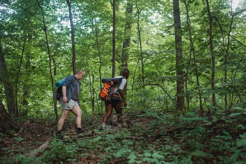 Young multiethnic backpackers in forest