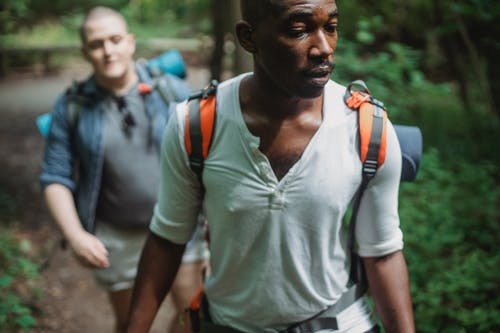 Serious diverse friends hiking in woodland