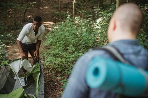 Unrecognizable male backpacker standing and looking at African American guy in shorts setting up tent in forest on sunny day