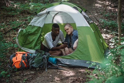 African American man showing images in smartphone to bald friend during camping in tent on sunny summer weather