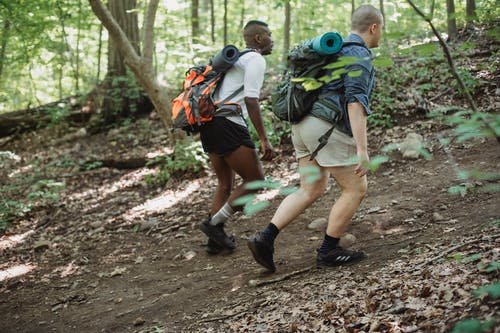 Unrecognizable diverse friends in casual clothes with backpacks with hiking equipment walking in green forest in daytime