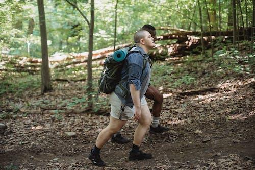 Pelancong Multirasial Berjalan Di Hutan