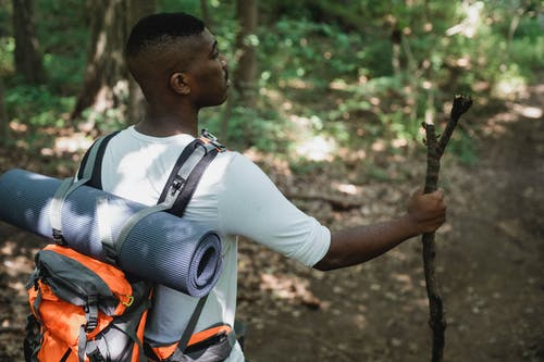 Side view of African American hiker standing with wooden stick on path in forest in daytime
