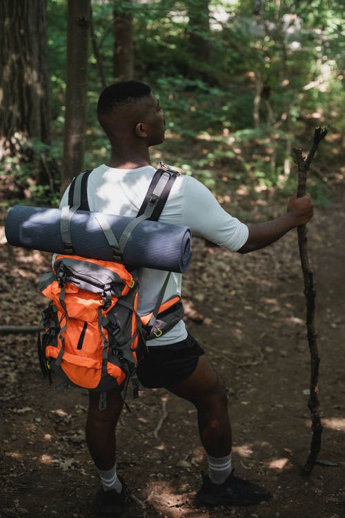 African American hiker with wooden stick standing in forest