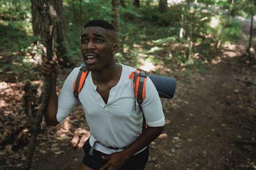 Traveler Kulit Hitam Trekking Di Hutan Di Hari Yang Cerah