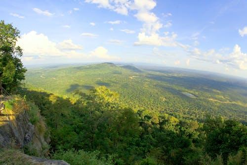 Fotobanka sbezplatnými fotkami na tému denné svetlo, hory, krajina, les