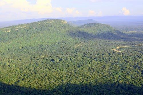 Kostenloses Stock Foto zu bäume, berge, feld, himmel