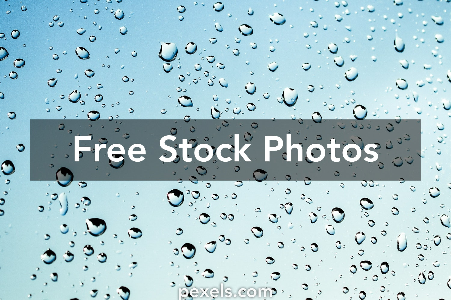 500 Beautiful Raindrops S Pexels · Free Stock S