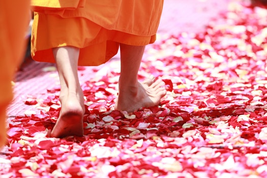Person Wearing Orange Dress Walking on Petals during Daytime