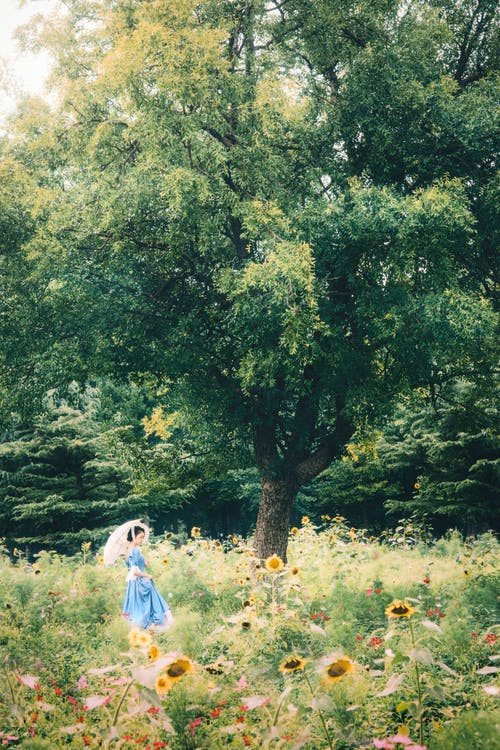 Woman in Blue Dress Walking on Green Grass Field