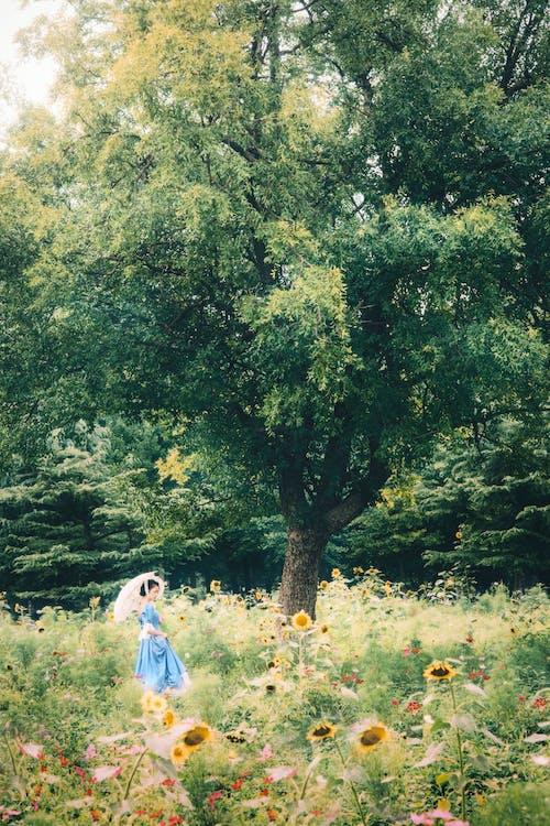 Woman in Blue Dress Walking on Green Grass Field
