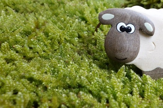 Brown and Gray Sheep to on Green Grass Field Toy