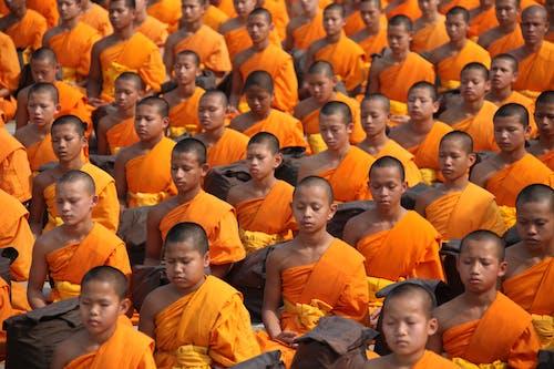 Foto d'estoc gratuïta de assegut, budhas, Budisme, budistes
