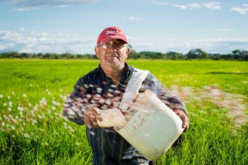 Ingyenes stockfotó életmód, farm, farmer, Férfi témában