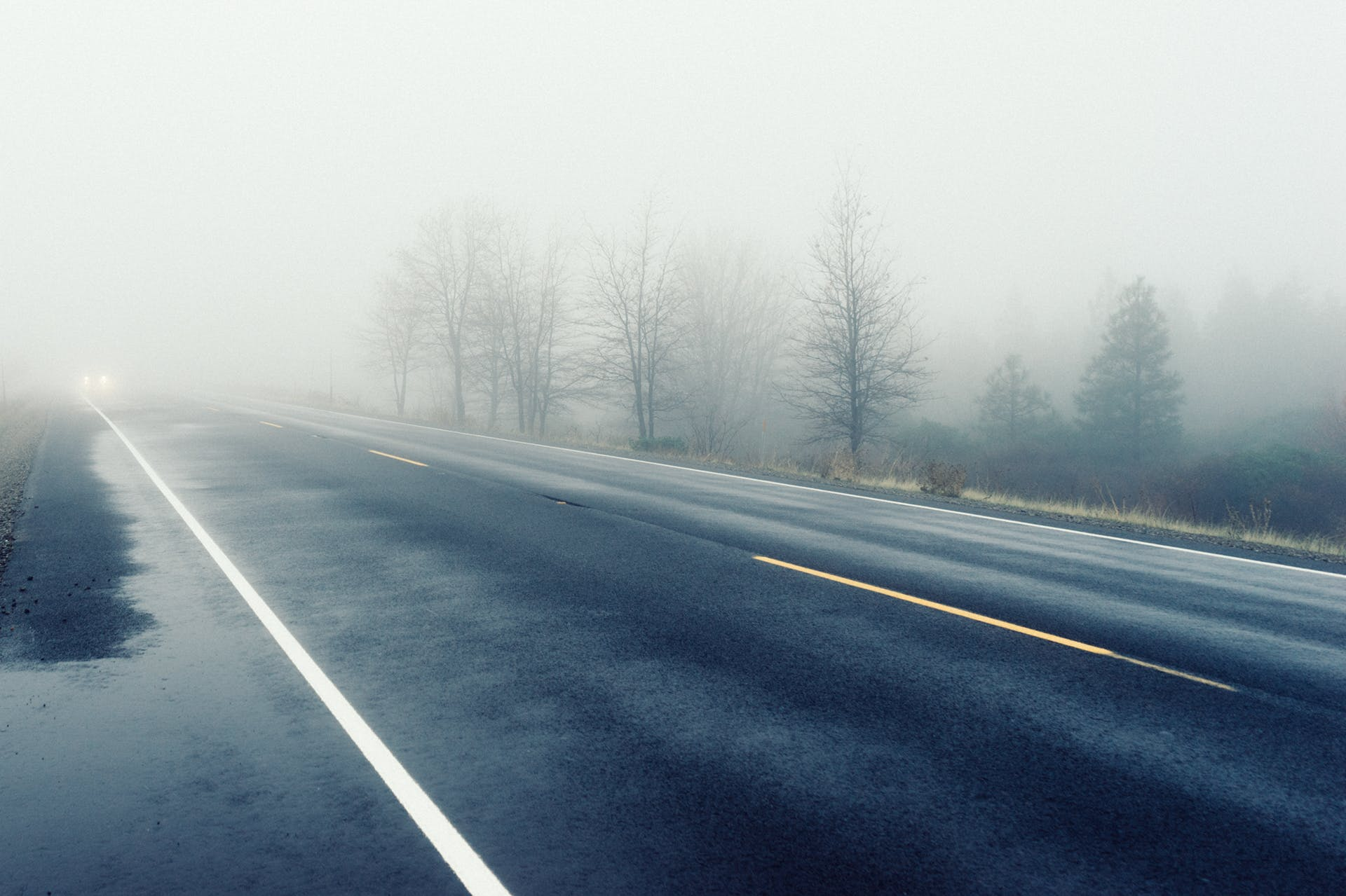 Grey Concrete Road Covered by Fogs