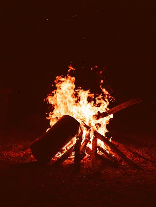 คลังภาพถ่ายฟรี ของ fogueira, silhueta, sombras