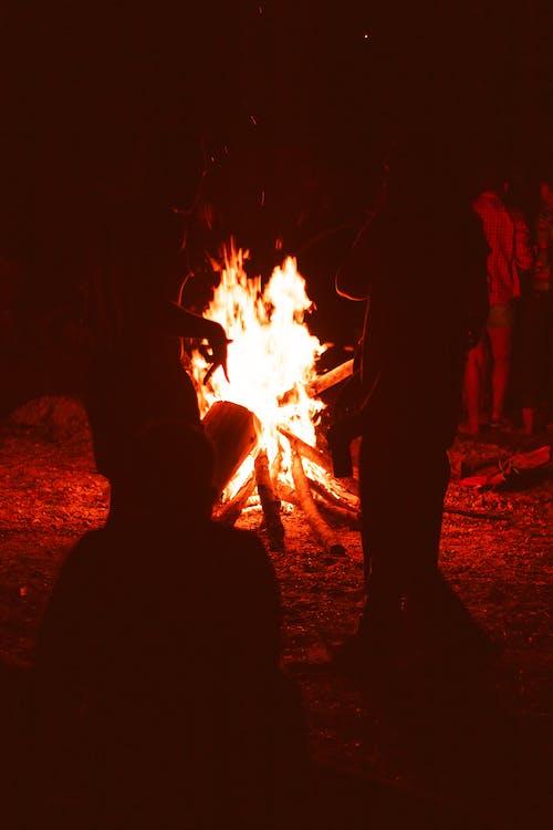 Kostnadsfri bild av fogueira, silhueta, sombras