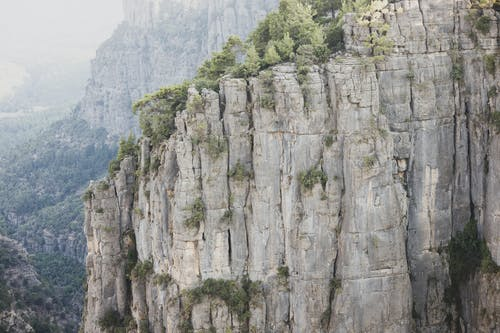 Kostenloses Stock Foto zu baum, berg, bergsteigen, draußen