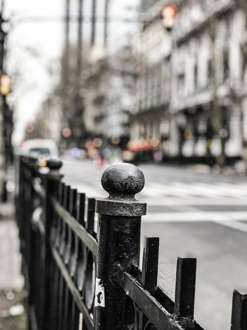 Immagine gratuita di amore, architettura, buenos aires, cimitero
