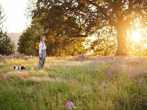 Безкоштовне стокове фото на тему «дитина, Дівчина, жінка, Захід сонця»