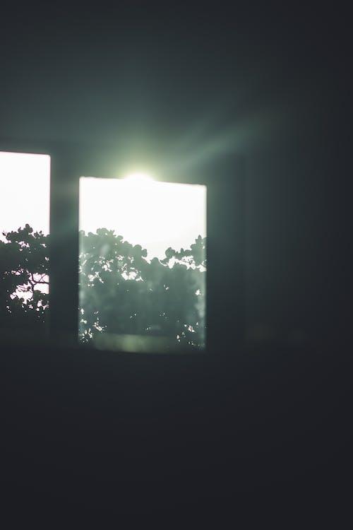 Free stock photo of aesthetic, god ray, nature