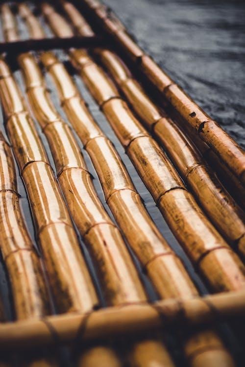 Brown Wooden Sticks on Gray Concrete Floor