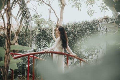 Stylish Asian woman near fence among trees