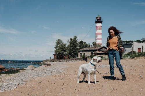 Woman in Brown Jacket Standing Beside White Short Coated Dog on Beach