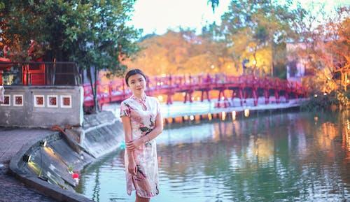 Gratis arkivbilde med bro, bruke, dagslys, kvinne