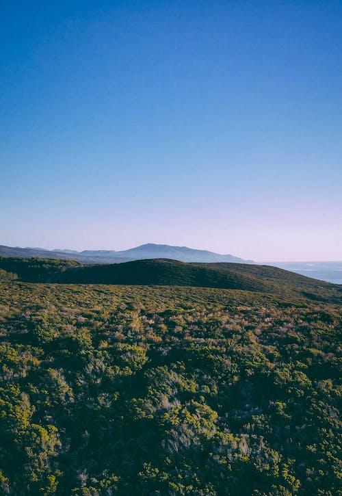 Foto stok gratis alam, bagus sekali, berbatu, berumput