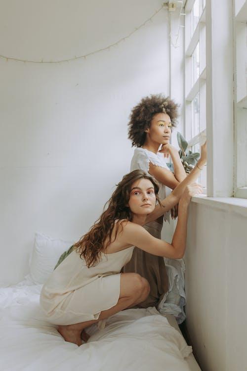 Imagine de stoc gratuită din acasă, adult, african american