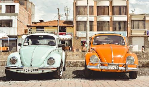 Ingyenes stockfotó antik, autó, auto clásico témában