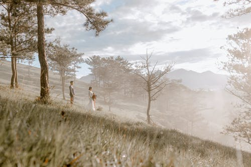 Elegant wedding couple standing on foggy hill