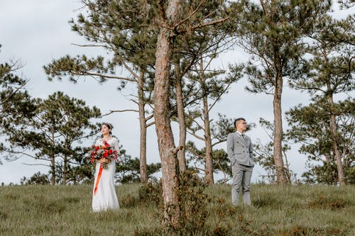 Newlywed couple on grassy field with trees