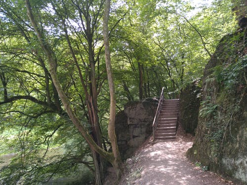 Free stock photo of Fluss, river, stairs, Treppe